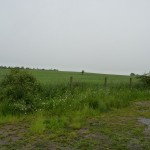 Hill 226 Scots Guards